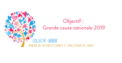 Collectif GRAVIR GCN